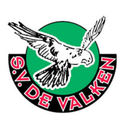 Sportvereniging De Valken