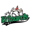 Honk- en Softbal Vereniging Wizards of BoZ
