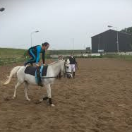 Paardensport vereniging de veldruiters