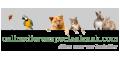 Onlinedierenspeciaalzaak.nl