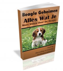 Beagle Handboek